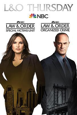 法律与秩序:特殊受害者第二十三季
